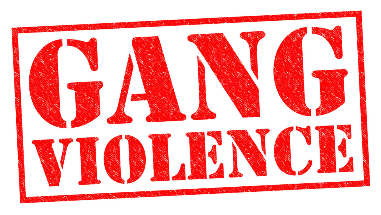 """Red text that reads, """"GANG VIOLENCE""""."""